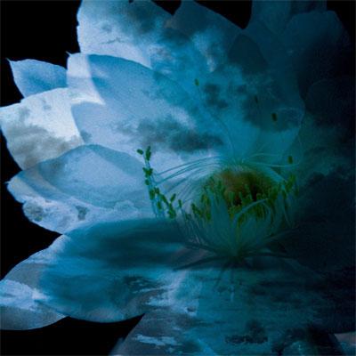 LUNA SEA MEMORIAL COVER ALBUM -Re:birth-
