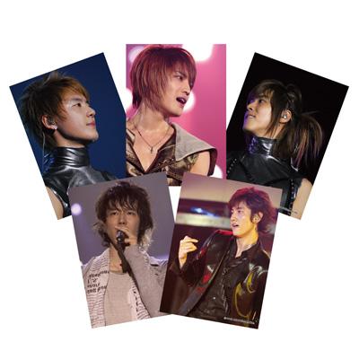 東方神起 3rd LIVE TOUR 2008 ~T~ 生写真セット(8枚入り)