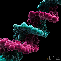 DNA【CDのみ】
