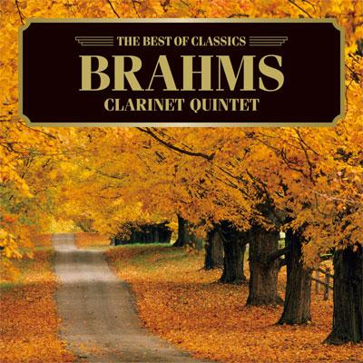 ブラームス:クラリネット五重奏曲、主題と変奏