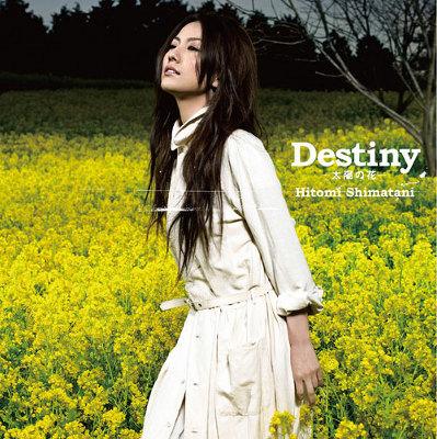 Destiny -���z�̉�-�^���� -tears of love-