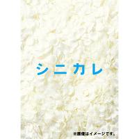 <avex mu-mo>  シニカレ完全版 ブルーレイBOX画像