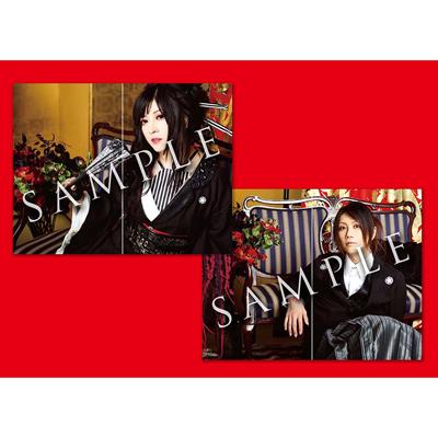軌跡 BEST COLLECTION+ mu-moショップ・FC八重流専売数量限定盤 【AL+DVD6枚組+BD3枚組(スマプラ対応)】