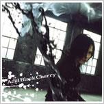 Acid Black Cherry「冬の幻」