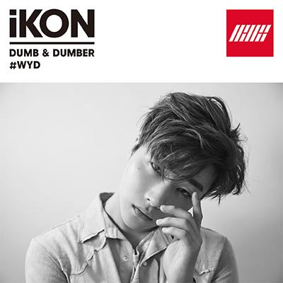 DUMB & DUMBER(CD)[JINHWAN盤]