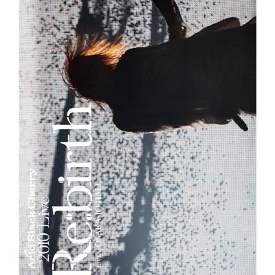 "2010 Live ""Re:birth"" ~Live at OSAKA-JO HALL~【Blu-ray Disc】"
