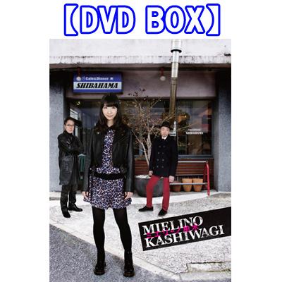 ミエリーノ柏木【DVD BOX】