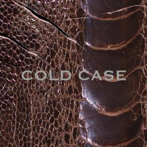 COLD CASE【vister】(CD+DVD)