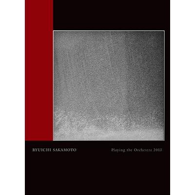 Ryuichi Sakamoto | Playing the Orchestra 2013(DVD)