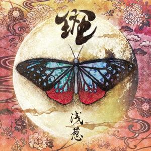 斑(CD)