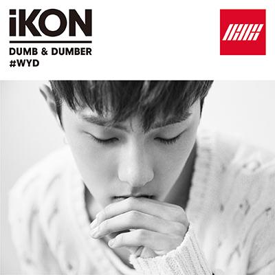 DUMB & DUMBER(CD)[DONGHYUK盤]
