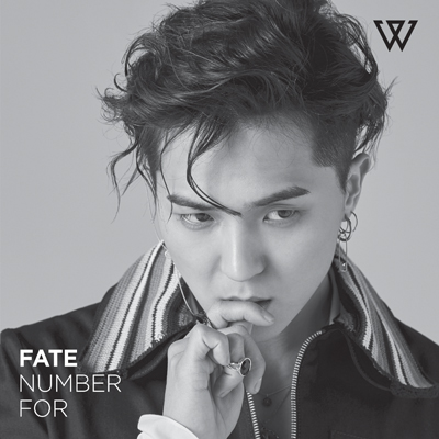 FATE NUMBER FOR(CD)[ソン・ミノ盤]