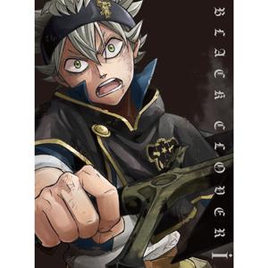 ブラッククローバー Chapter 1(DVD)