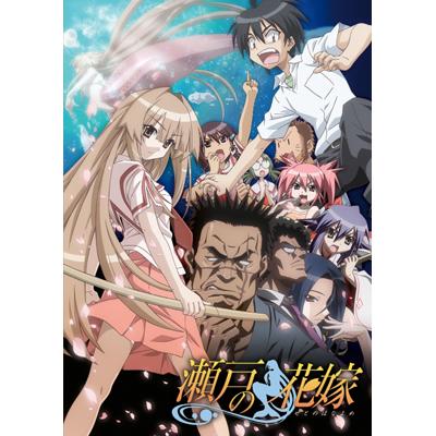 瀬戸の花嫁 全話見Blu-ray