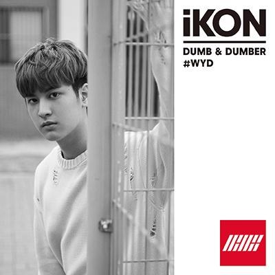 DUMB & DUMBER(CD)[CHANWOO盤]
