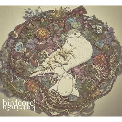 birdcore!(CD+DVD)