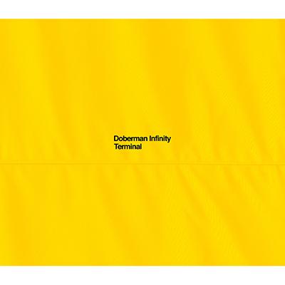 TERMINAL【初回盤】(CD+2DVD)