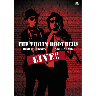 THE VIOLIN BROTHERS LIVE !!