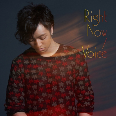 Right Now/Voice(CD)