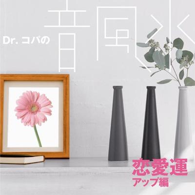 Dr.コパの音風水~恋愛運アップ編~