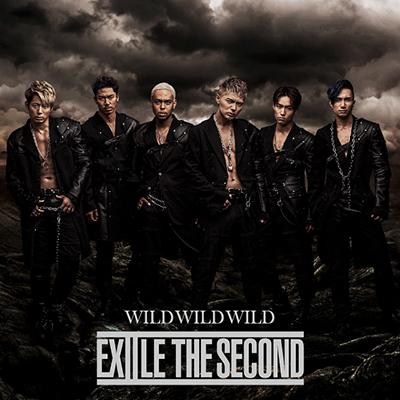 WILD WILD WILD(CD)