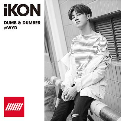 DUMB & DUMBER(CD)[B.I盤]