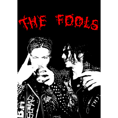 THE FOOL MOVIE 2 ~THE FOOLS~(DVD+CD)