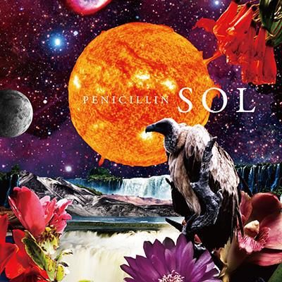 SOL(Type-C)