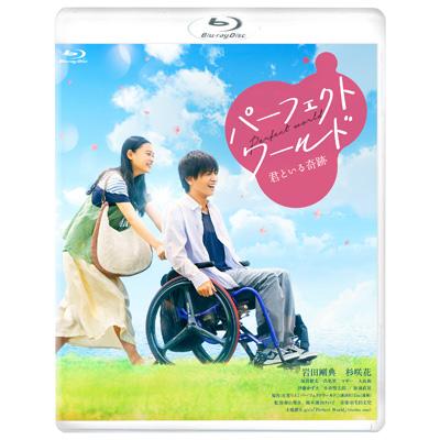 パーフェクトワールド 君といる奇跡 (Blu-ray)