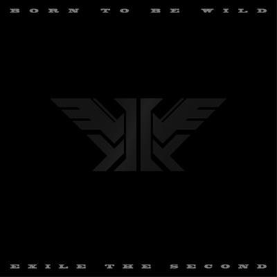 BORN TO BE WILD(CD)