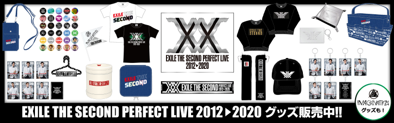 E-girls PERFECT LIVE 2011→2020グッズ