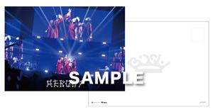 DVDサイズポストカード(183mm×129mm)